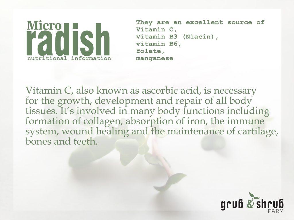 Microgreen radish nutritional information